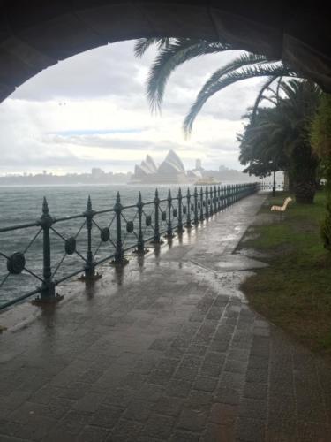 Syndey Rain's
